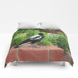 Australian Magpie Comforters