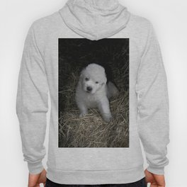 Great Pyrenees Puppy Hoody