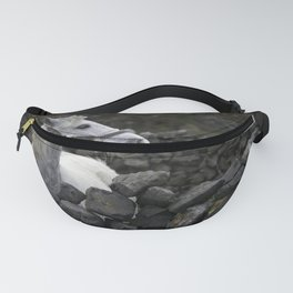 Equestrian Winds Fanny Pack