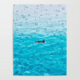 Orca Whale gliding through the water on a rainy day Poster