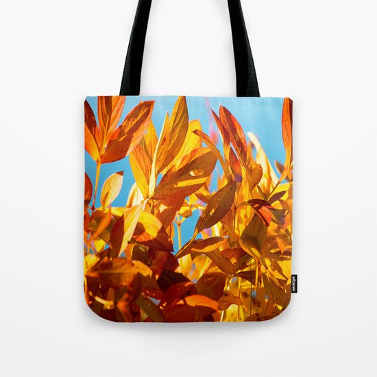 Autumn colors leaves against the blue sky Tote Bag