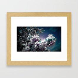 Flowers Purple & Teal Framed Art Print