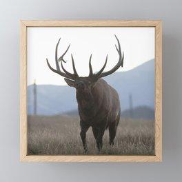 Watercolor Elk Bull 48 Framed Mini Art Print
