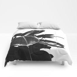 Black Ficus Elastica Comforters