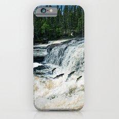 Swim Upstream iPhone 6s Slim Case