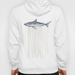 Tiger Shark Hoody