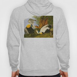 Common Eider Duck Hoody