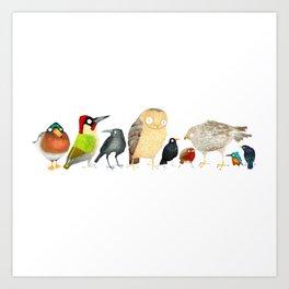 Woodland Bird Collection Art Print