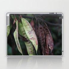 Carob Laptop & iPad Skin