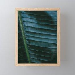 Botanical photography print   Dark green tropical leaf of a palm   Jungle Wanderlust art Framed Mini Art Print