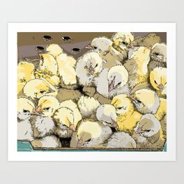 Chicks Art Print