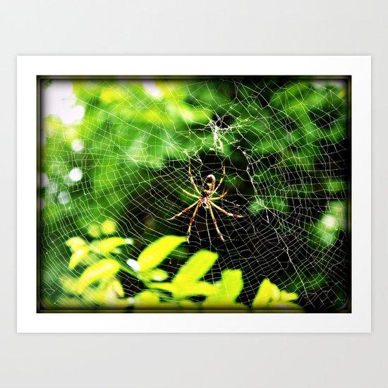 Webs Of Green Art Print