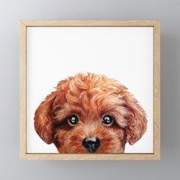 Toy poodle red brown Dog illustration original painting print Framed Mini Art Print