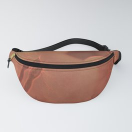 Sunny Bougainville( glow) Fanny Pack