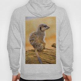 Meerkat (Color) Hoody