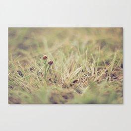 Ladybug Friends Canvas Print