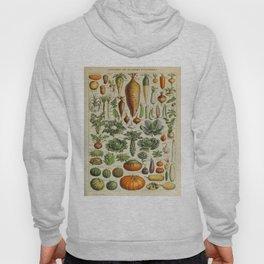 VEGETABLES Legumes Et Plantes Potageres Vintage Scientific Illustration French Language Encyclopedia Hoody