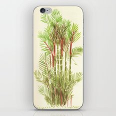 Palmier Rouge - Red Palmtree iPhone & iPod Skin