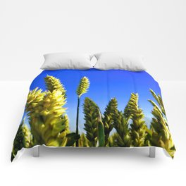 On the field Comforters