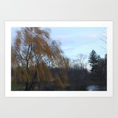Wind in the Willow Art Print