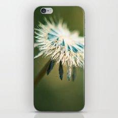 The Parasol iPhone & iPod Skin