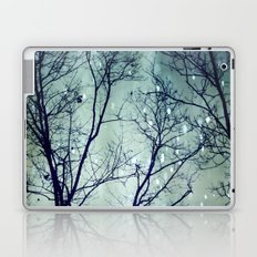 Wintergreen Twilight Laptop & iPad Skin