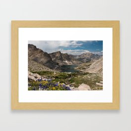 Alpine Lakes, Wildflowers and Mountains in the Wyoming Wilderness Framed Art Print