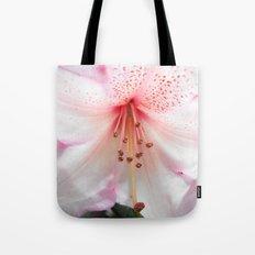 Light pink azalea or rhododendron flower. floral botanical garden photography. Tote Bag