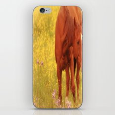 Wild as the Flowers iPhone & iPod Skin