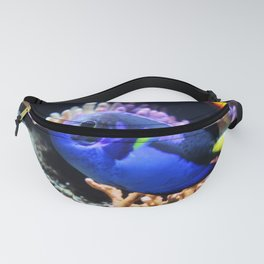 Blue Hippo Tang Fanny Pack