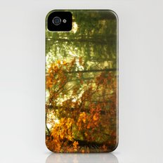 Mysterious Fall iPhone (4, 4s) Slim Case