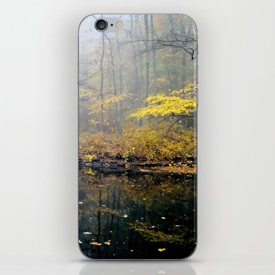 mist on the river iPhone & iPod Skin