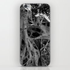 Raíces 2 iPhone & iPod Skin