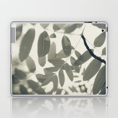 Light Green Forest Leaves Abstract Laptop & iPad Skin