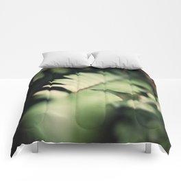 Blurred Close Up Of Fern Leaf Comforters