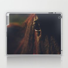 Horse, macro photography, head, mane, sunset, hasselblad, italy, horses Laptop & iPad Skin