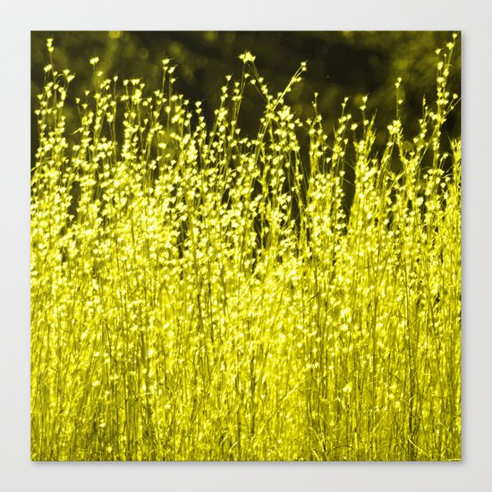 Grasses 2 Summer Sun Canvas Print