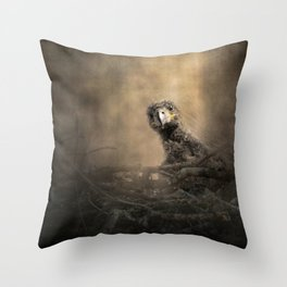 Lone Eaglet In The Nest Throw Pillow