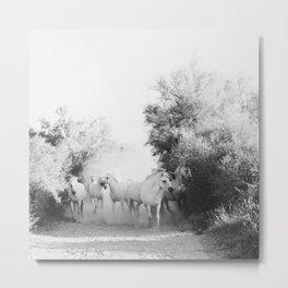 horse print #1 Metal Print