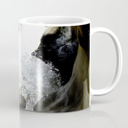 Climbing Down to the 200-Foot Depths of Box Canyon Falls Coffee Mug
