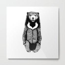 Sitting Sun bear Metal Print