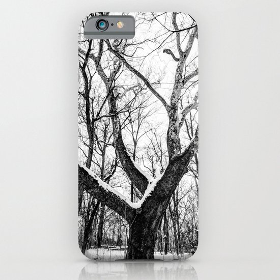 entanglement iPhone & iPod Case