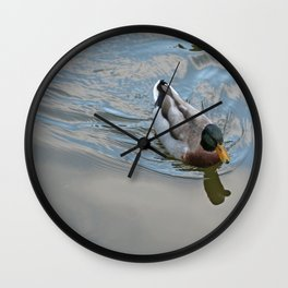 Mallard duck swimming in a turquoise lake 1 Wall Clock