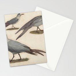 L Hirondelle de mer Tschegrava (Fr) LHirondelle de mer Hansel (Fr) La Mouette de Dorbigny (Fr)1 Stationery Cards