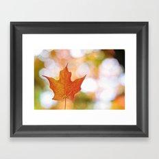 Maple leaf bokeh Framed Art Print