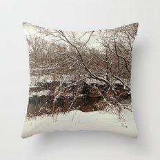 Snowy Creek View  Throw Pillow