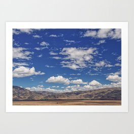 Travelling The South Island Art Print