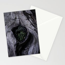 A Knot in a Log Stationery Cards