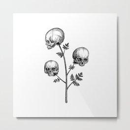 Poison Hemlock Metal Print