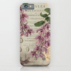 Hummingbirds Slim Case iPhone 6s